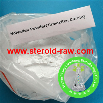 Clomid Tamoxifen Cancer